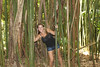 Manoa Falls Hike : June 4, 2012